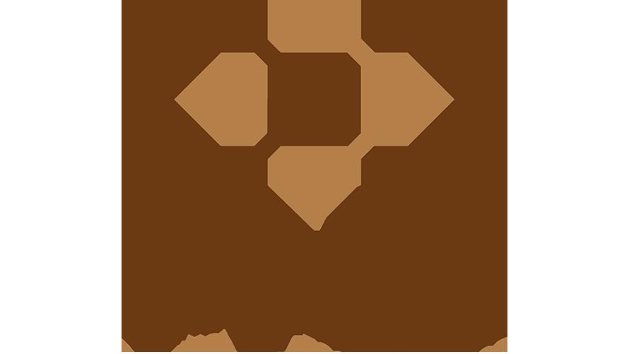 Logo PNS